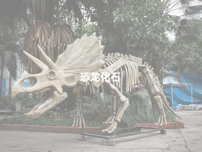 仿真恐龙化石产品