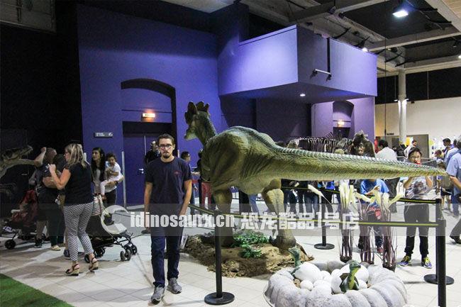 仿真恐龙展-法国CUZCO展览