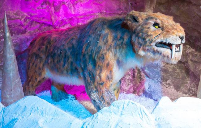 仿真冰河动物-剑齿虎