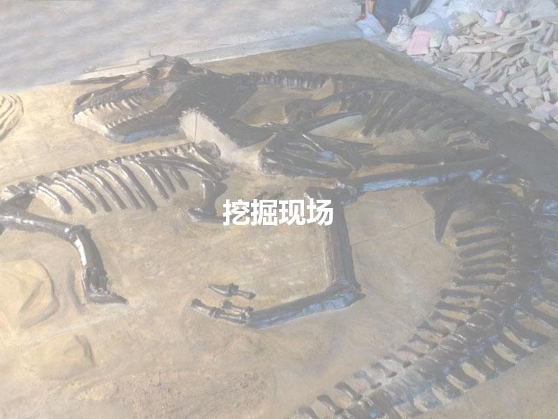 恐龙骨架挖掘现场产品