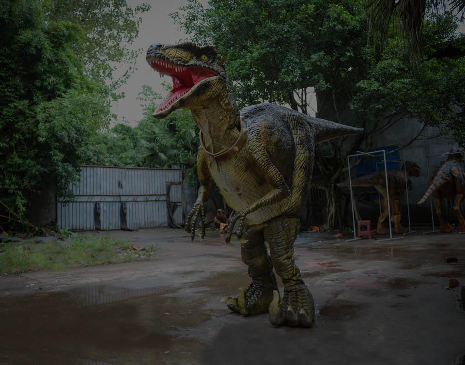 藏腿恐龙服