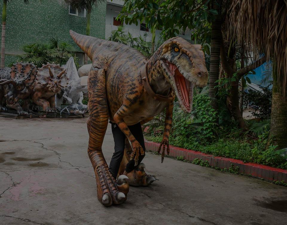 不藏腿恐龙服