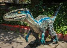 仿真恐龙导航图