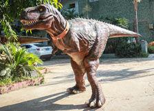 恐龙服装导航图