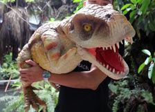 恐龙玩偶导航图