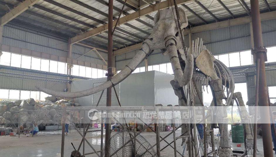 仿真动物猛犸象化石