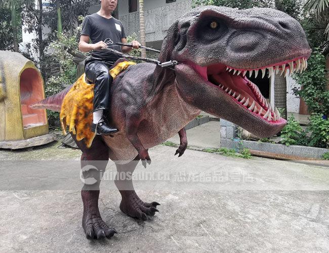 恐龙骑士服