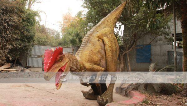 定做恐龙服装