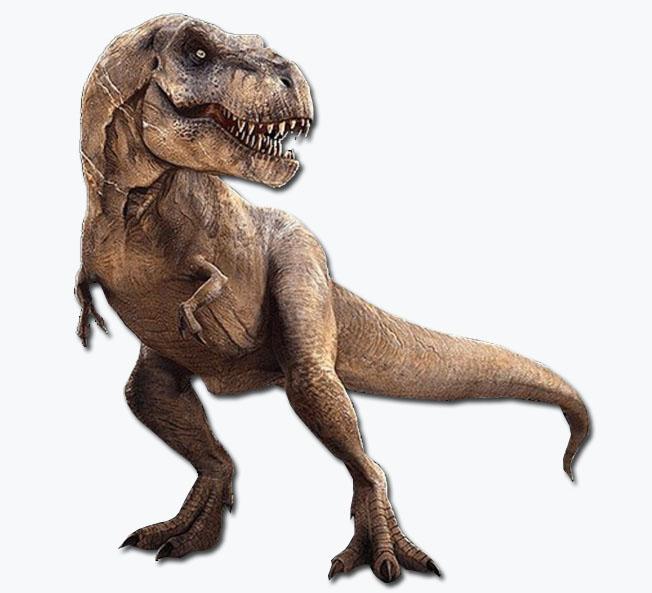 电子恐龙模型