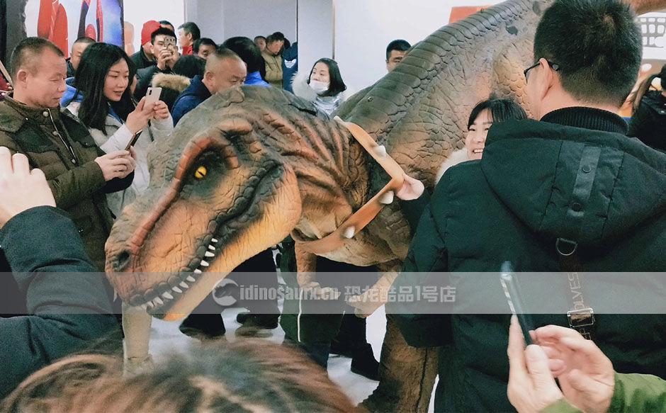 创意恐龙服