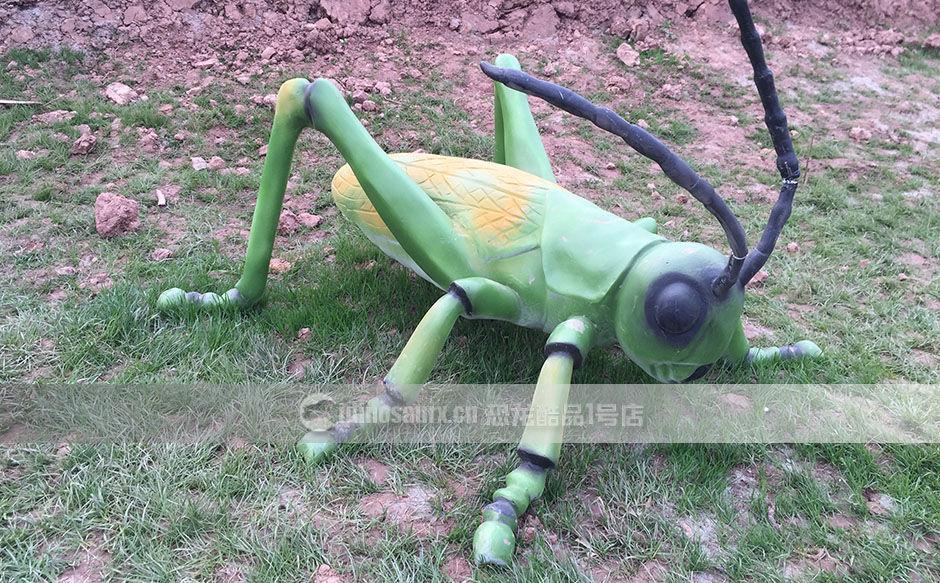 昆虫娱乐展品
