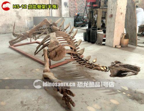 仿真剑龙化石(半身)