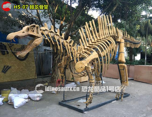 棘龙骨架复制品