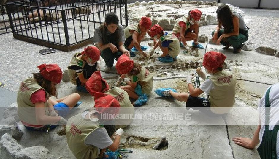 玻璃钢恐龙骨架挖掘现场