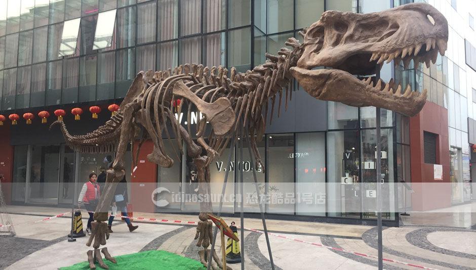 玻璃钢霸王龙化石展品在广场上