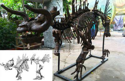 定制怪兽骨架