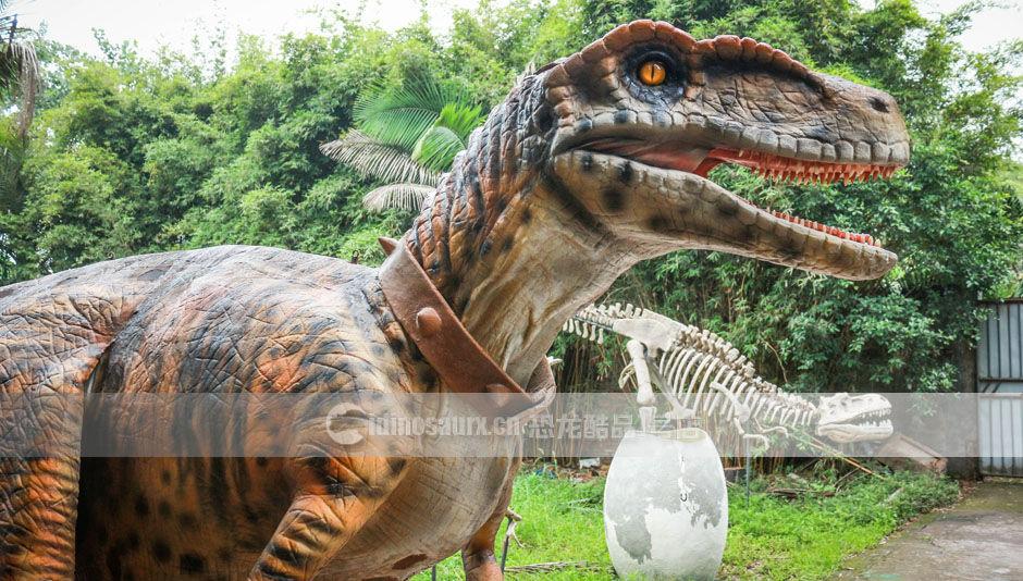 太原仿真恐龙