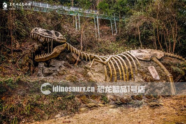皇龙峡恐龙骨架