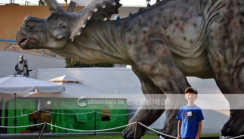 恐龙园景观