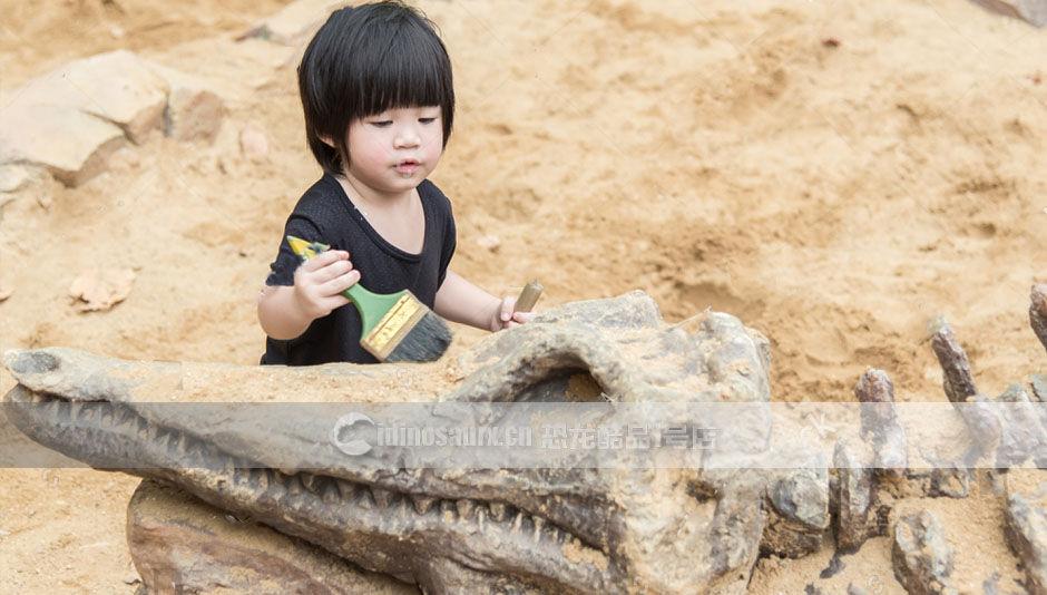恐龙考古挖掘场景定制
