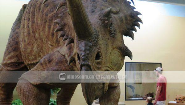 制作博物馆恐龙
