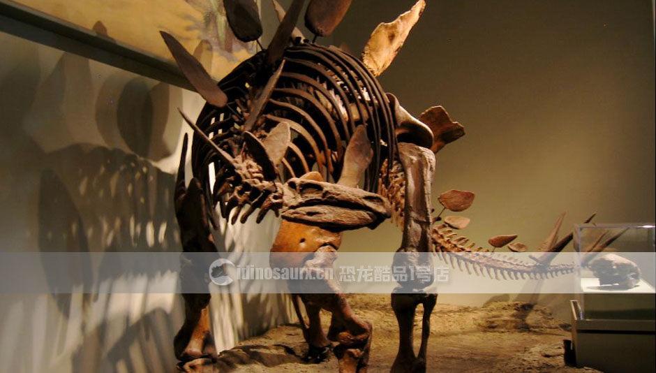 恐龙化石制作商