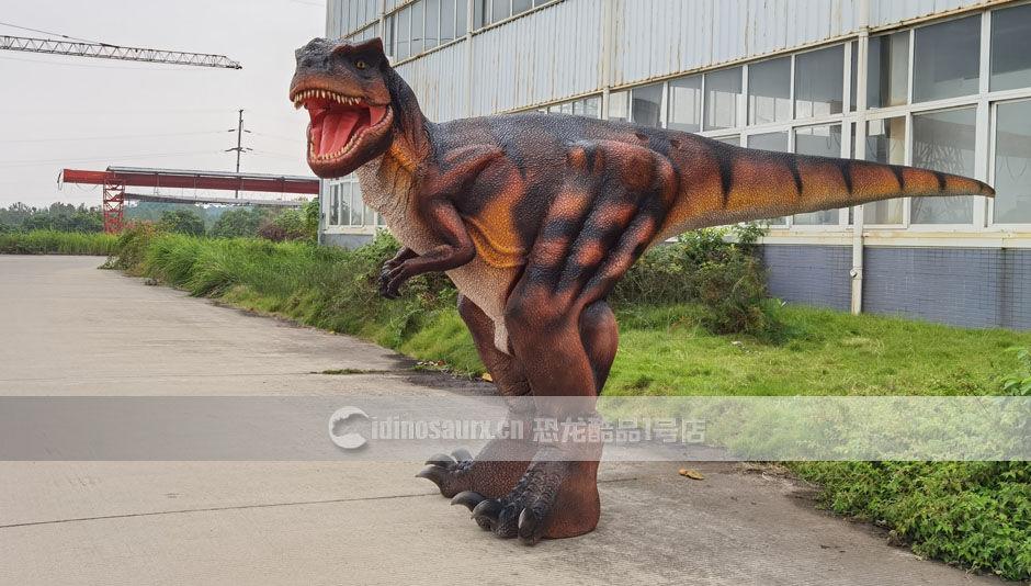 不露腿恐龙服