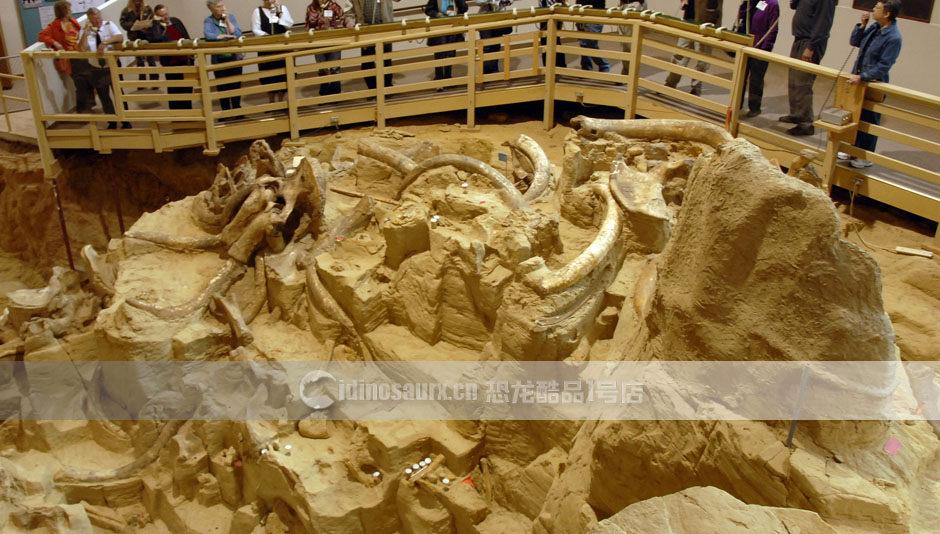 高仿恐龙骨架挖掘场地景观