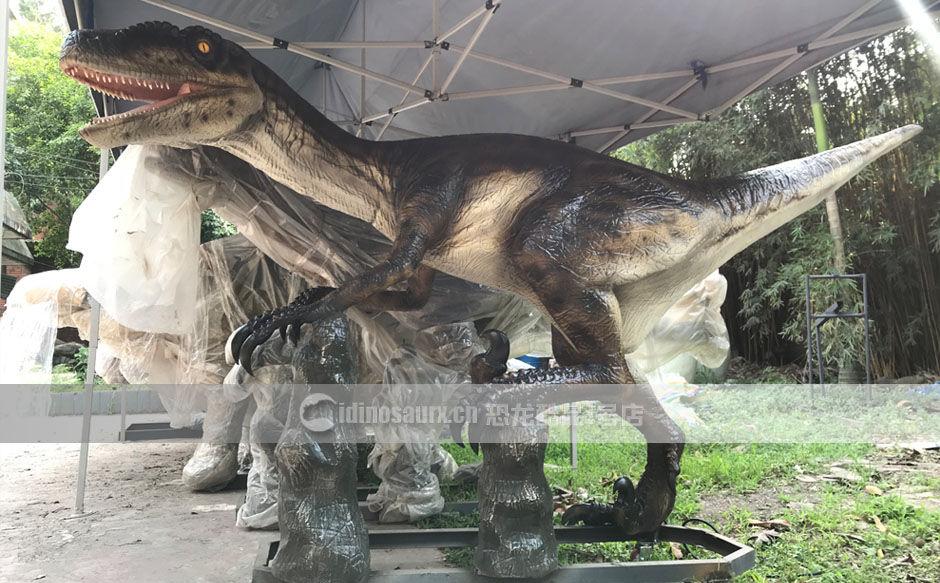 定制恐龙教学模型