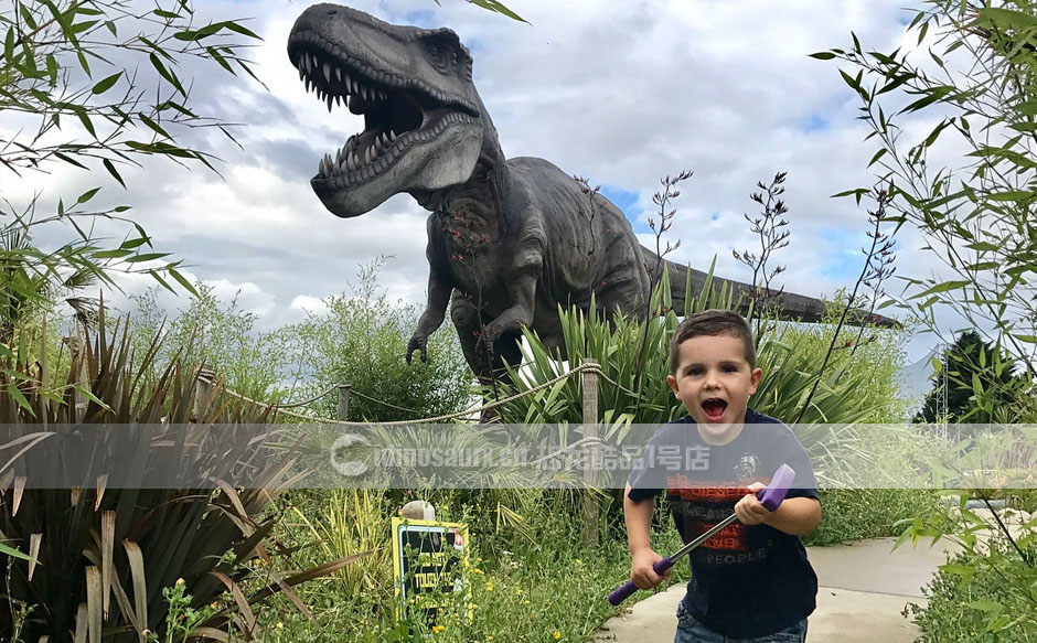 恐龙展道具模型设备应用