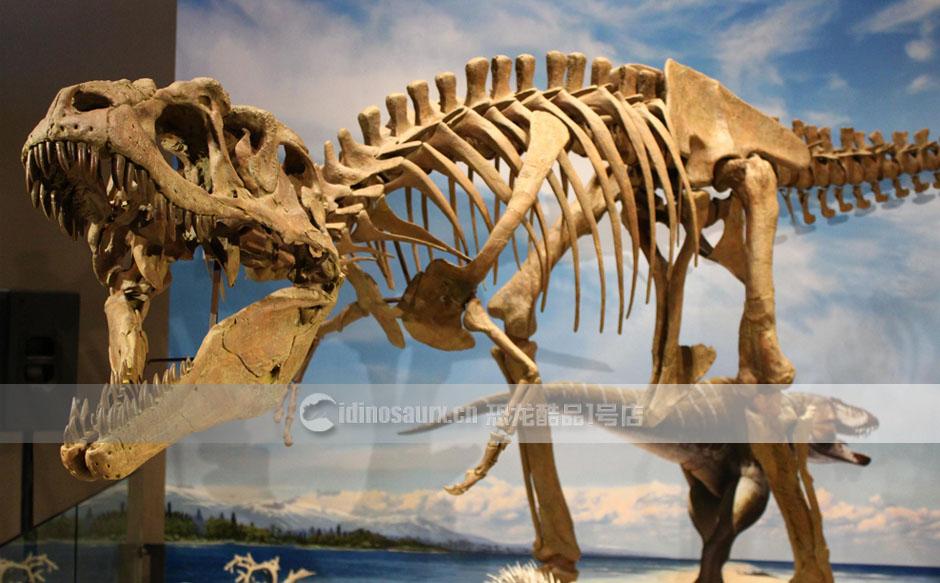 恐龙骨骼装饰品