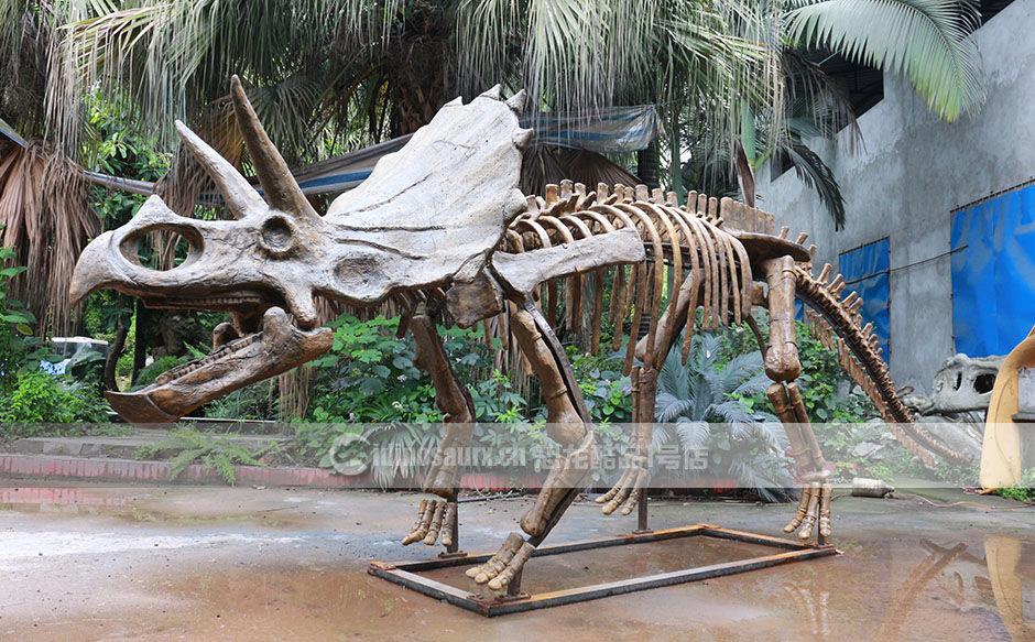 仿制的三角龙骨架