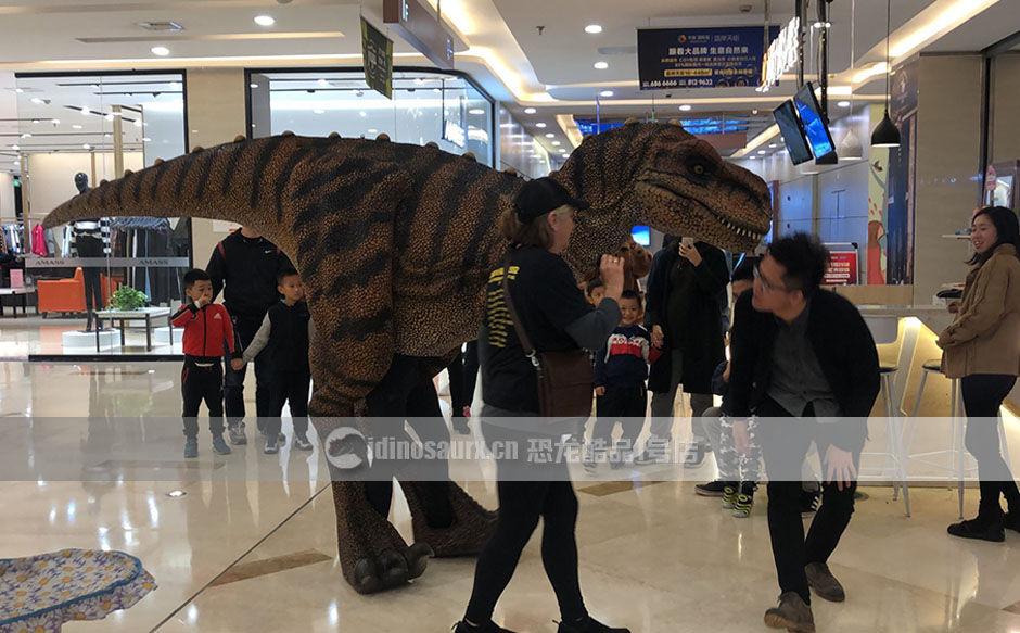 恐龙服产品