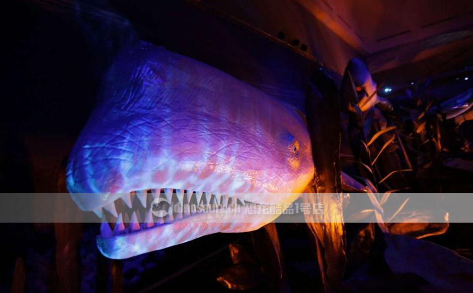 大型海洋动物模型